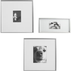 gallery frames