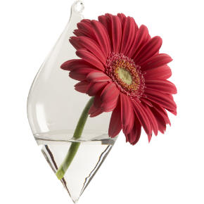 teardrop diamond hanging vase