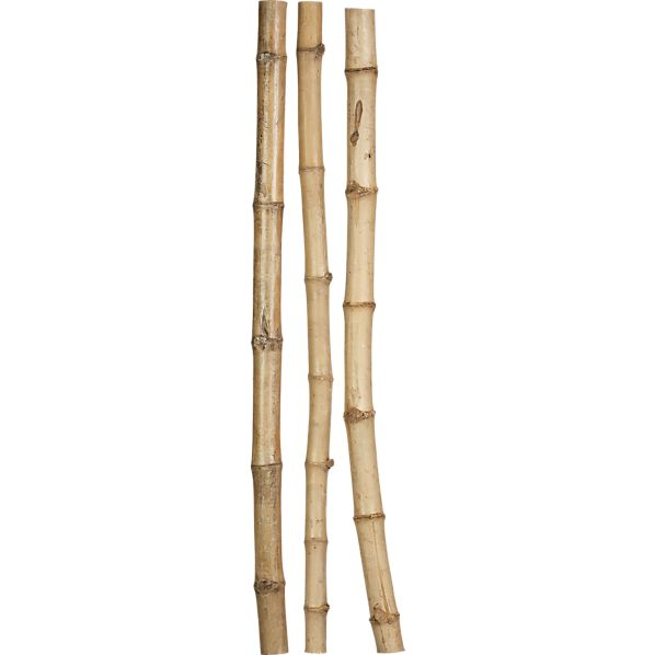 Set of 3 Amazon Bamboo Poles