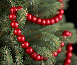 Red Ball Garland