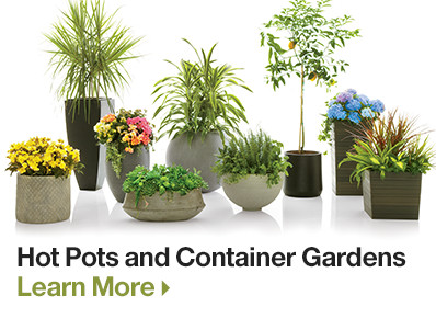Hot Pots and Container Gardening