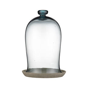 Large Bell Jar and Saucer