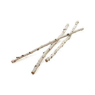 Tall Birch Branches Set of Three