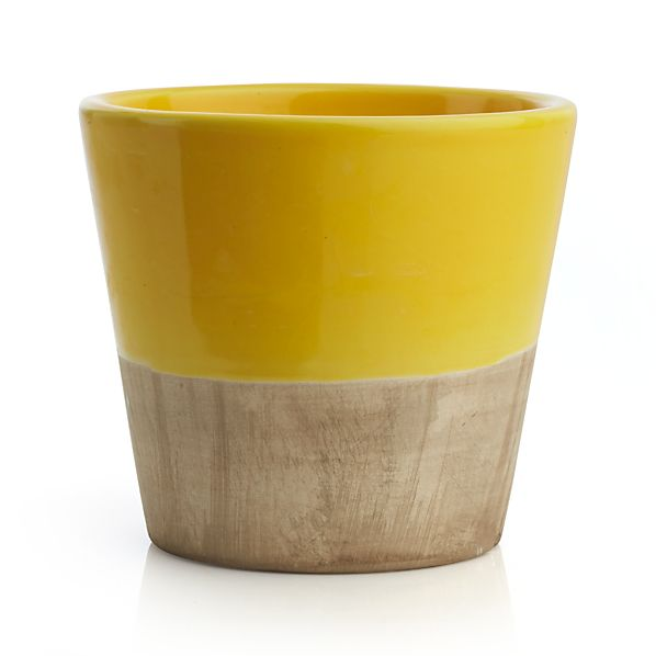 Carnivale Yellow Mini Planter