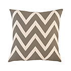 Chevron Blush Pillow.