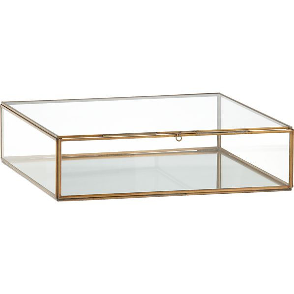 Clarus Extra Large Brass Display Box