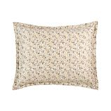 Clove Standard Sham