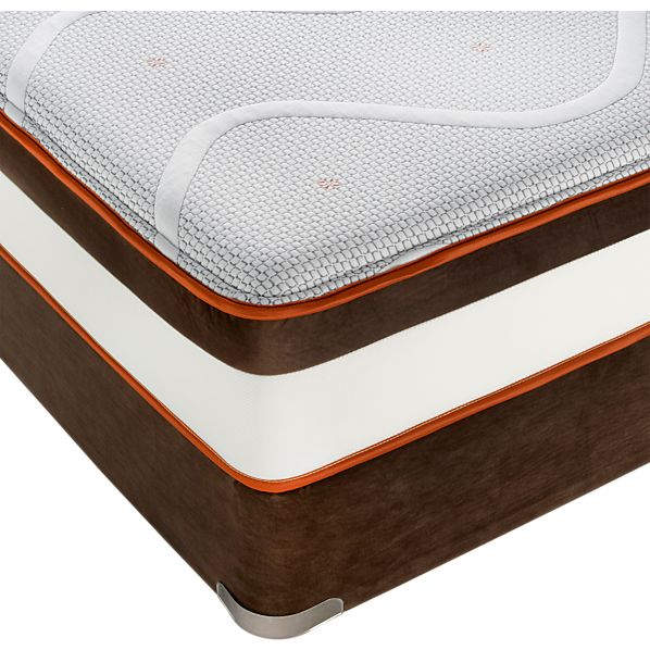 Simmons ® Queen ComforPedic ™ Plush Mattress