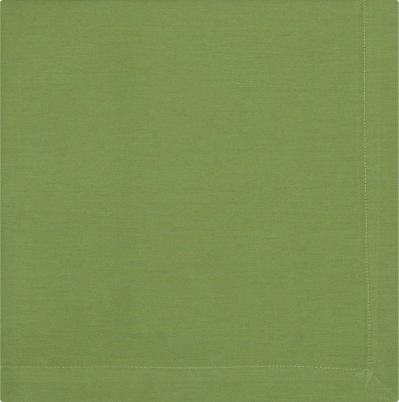 "Solid mint napkin is cotton sateen with 1"" hem and mitered corners.<br /><br /><NEWTAG/><ul><li>100% cotton</li><li>Hand-dyed and handwoven</li><li>Machine wash napkin; tumble dry, warm iron as needed</li><li>Made in India</li></ul>"
