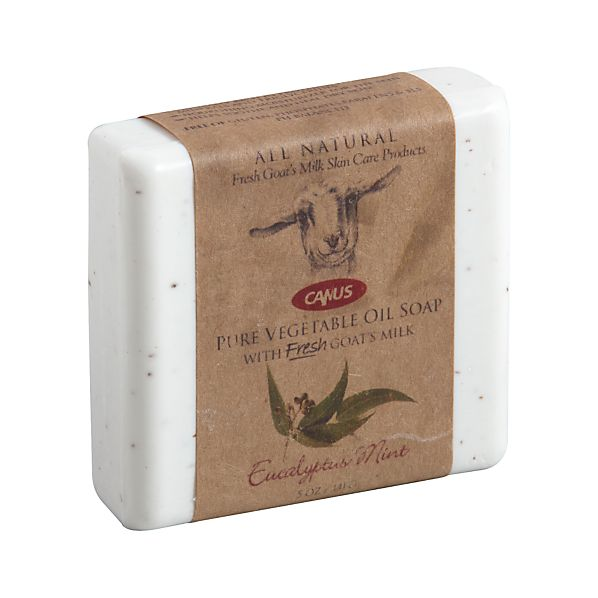 Eucalyptus Mint Bar Soap