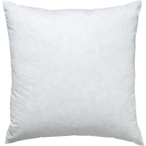 Feather-Down 25 Pillow Insert