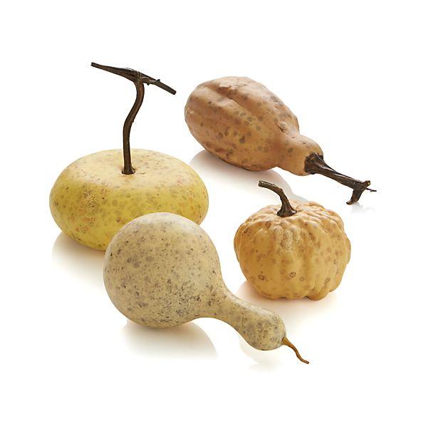 GourdsF14