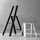 Hasegawa Lucano Step Stools