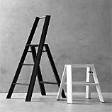 Hasegawa ® Lucano Step Stools