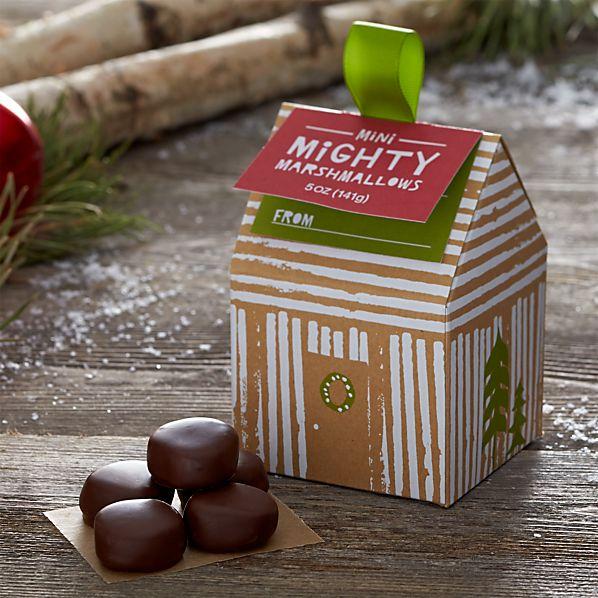 MiniMightyMarshmallowsF14