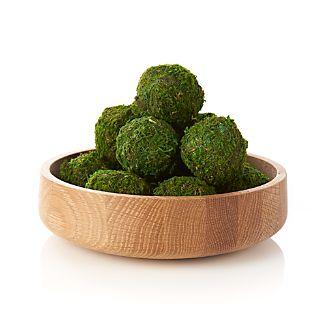 Mini Moss Balls