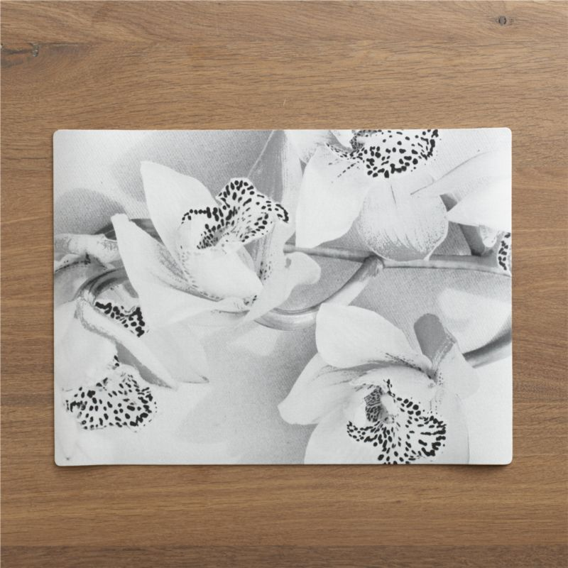 Photo-real orchids cast lifelike shadows on gallery-worthy placemats printed on textured, easy-care vinyl.<br /><br /><NEWTAG/><ul><li>100% PVC</li><li>Stain resistant</li><li>Wipe with damp cloth</li><li>Made in USA</li></ul>