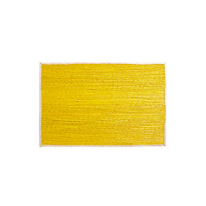 "Palm Yellow 30""x50"" Rug"