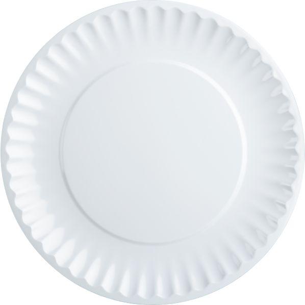 Picnic White Dinner Plate
