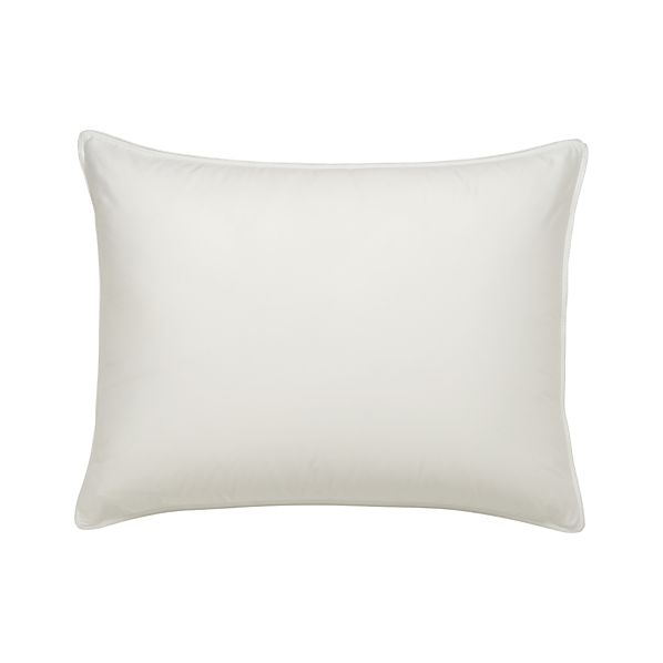 Set of 2 Standard Pillow Protectors