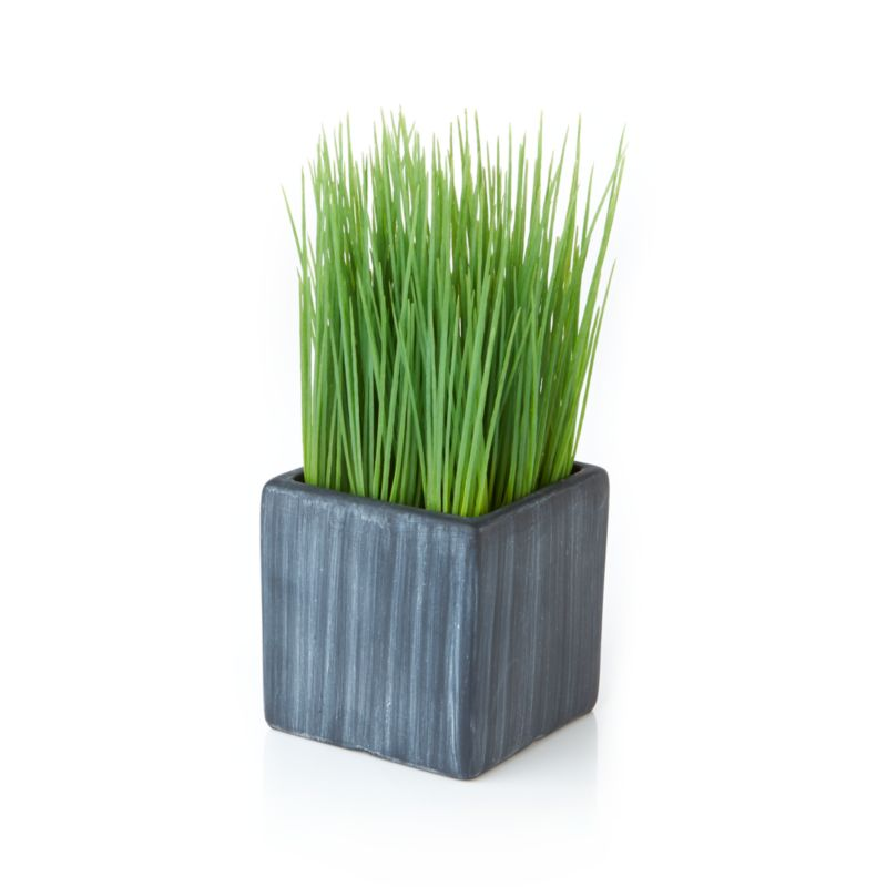 Mini Potted Artificial Grass Crate And Barrel