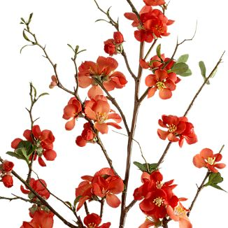 Quince Artificial Flower Stem