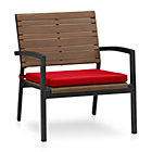 Rocha Lounge Chair with Cushion