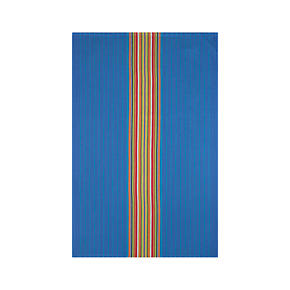 Salsa Dos Blue Dishtowel