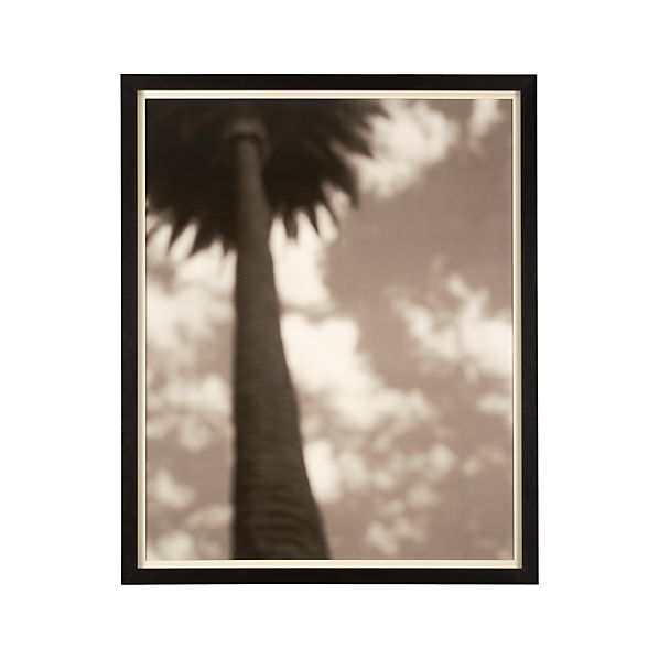 Sepia Palm Print