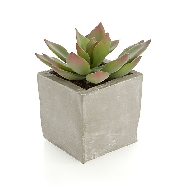 Potted Artificial Short Succulent