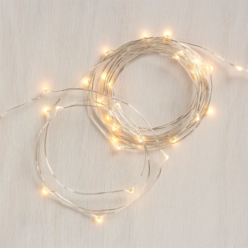 Tiny twinkling lights on a slender silver wire wrap trees, garlands and shrubbery with an elegant sparkle and warm glow. Beyond the holidays, versatile indoor-outdoor lights create a soft glow for seasonal dining al fresco. Battery-operated lights have timer function for 8 hours on, 16 off.<br /><br /><NEWTAG/><ul><li>LED light bulbs and UL approved wire</li><li>For indoor or outdoor use</li><li>Battery operated; requires three AAA (not included)</li><li>Made in China</li></ul>