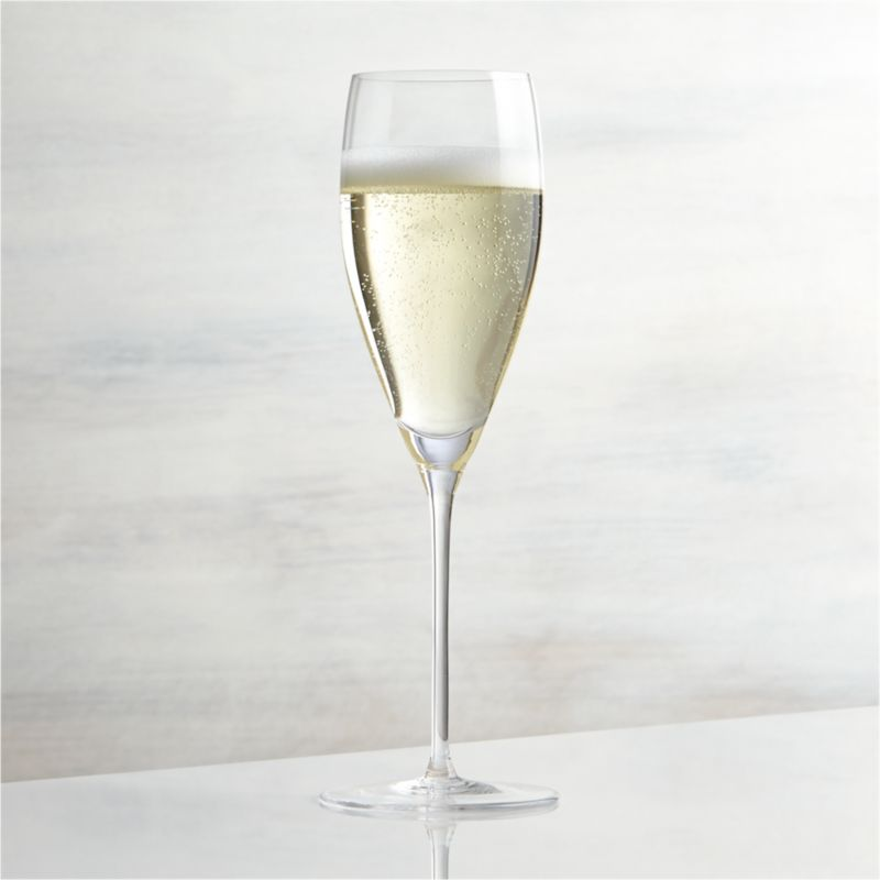 Great wines deserve the right glass to bring out their distinct aromas and tastes. Our Vineyard wine glass collection offers a suite of glasses, each crafted with specially shaped bowls to enhance enjoyment of white, red and sparkling wines. The narrow profile of this slim glass prolongs the bubbles of fine champagne, prosecco and other sparkling wines. Each elegantly shaped glass is handcrafted by highly skilled European glassmakers.<br /><br /><NEWTAG/><ul><li>Handcrafted</li><li>Glass</li><li>Hand wash</li><li>Made in Czech Republic</li></ul>