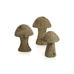 Volcanic Mushrooms