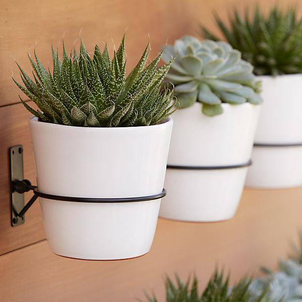 wall planter hook crate and barrel. Black Bedroom Furniture Sets. Home Design Ideas