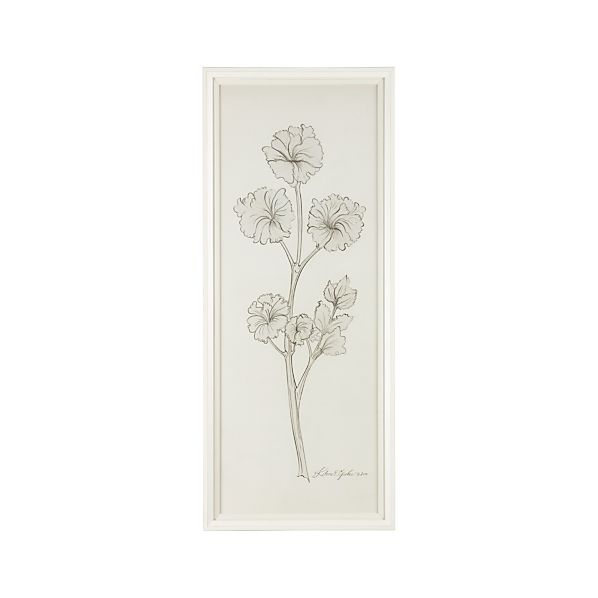 White Herbology Parsley Print