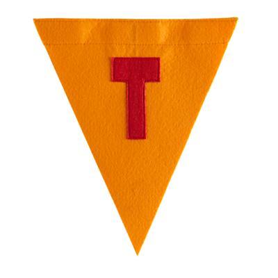 T Print Neatly Pennant Flag (Boy)