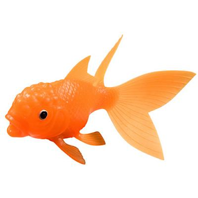 All That Glitters Goldfish
